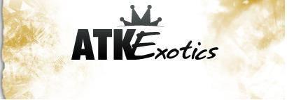 atk-exotics-coupon